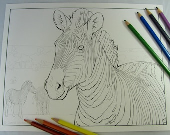 Zebra Printable Download Adult Coloring Page by Carrie Michael DTPD