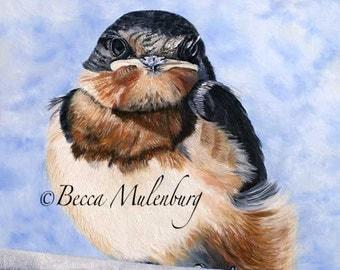 bird painting Original oil painting wildlife realism fine art barn swallow