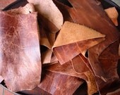 Rust Leather Scraps 1 POUND Bison 3 to 4 ounce Random Mix - Distressed Leather Remnants