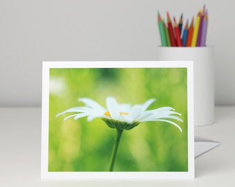 White Oxeye Daisy flower on greenery floral photo note card, garden photography blank notecard stationery, a2 or a7