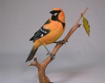 Altamira Oriole on branch Wooden carved Bird