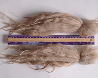 special offer 30% off Raw Suri Alpaca lite fawn baby 8-12 in for Doll Hair - Blythe wig, pullip, doll wig, reborn, reroot, bjd