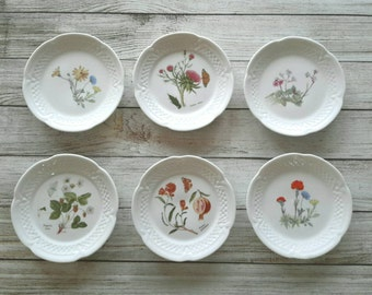 FRENCH PETITE Vintage Wildflower Plates, Cupcake Plate,Bread and Butter Plates Set of 6 China Plate Wall Decor