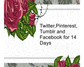 Twitter,Pinterest ,Facebook and Tumblr for 14 Days-I will pin up to 50 items to My Pinterest
