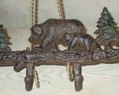 Cast iron bear and cub wall hooks rusty brown and green or pick your color handpainted