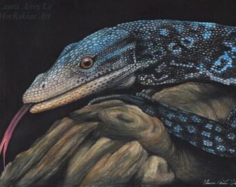 Blue Tree Monitor - 8 x 10 Fine Art Print - By Laura Airey Le Reptile Lizard Art