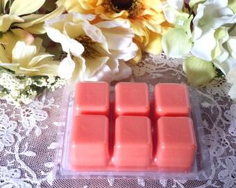 Orange & Clove Soy Tarts, Wax Melts, Soy Melts