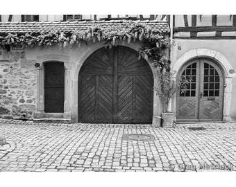 Fine Art Black & White Photography of Doors and Wisteria in the Village of Riquewihr in Alsace France