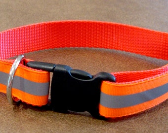 "1"" Reflective Tag Collar Buckle Style for Sighthounds/Dogs"