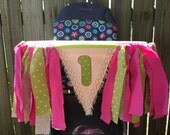 lime and pink First birthday high chair banner, cake smash photos, high chair banner, high chair skirt, first birthday party, 1st birthday,1