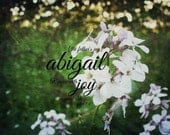 Abigail design Girl bible verse art Woman Scripture quote nature Christian name print Rejoice with joy unspeakable 1 Peter the fathers joy