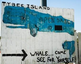 Tybee Island Whale Beach Photography