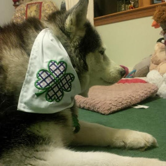 Plaid Four Leaf Clover Dog Bandana for St. Patrick's Day