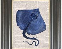Manta ray on dictionary or music page COUPON SALE Cobalt blue Dictionary art print Music Digital print Marine Wall decor No. 2084