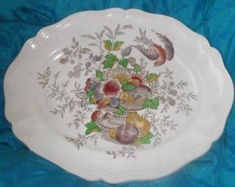 Beautiful Transferware Platter Royal Dalton HAMPSHIRE