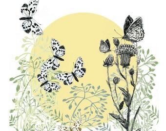 Butterflies on Seedheads with Yellow Sun - Art Card