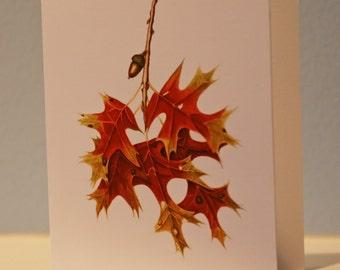 Windswepy Oak Leaf Note Card