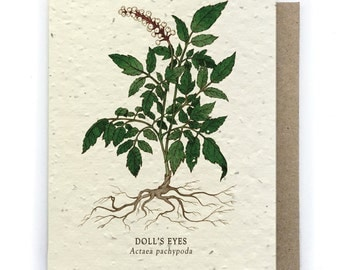 Doll's Eyes Card - Plantable Seed Paper - Blank Inside