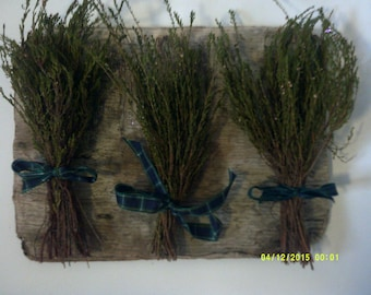 Lucky White Heather Sprig  - Wild harvested in Scottish Highlands Faery Charm  pagan Burns Night