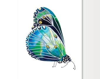 Limited Edition Print of a Butterfly