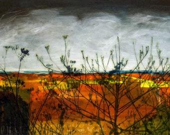 Prussia Cove Seedheads - Original Art Print - landscape