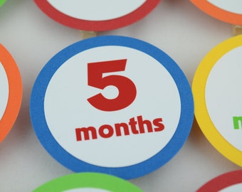 12 Month Photo Banner, First Year Photo Banner, First Year Banner, Birthday Party, c-1228