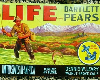 1940s 1950s Bartlett Pear Original Crate Label Farming Advertising Americana Fishing California