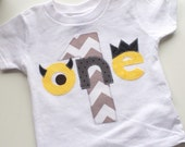 Monster Birthday Shirt First Ready to ship Birthday yellow gray Shirt photo prop