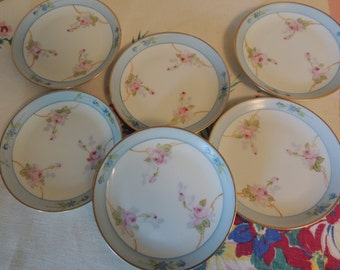SIX Vintage Bavarian Porcelain Bread Plates Handpainted Hutschenreuther Selb Pink & Blue w Gold Rim Wedding Table Bridal Gift Romantic Home
