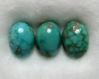 Carico Lake Mine Natural Turquoise Cabochons from Nevada, 2.28 cttw.