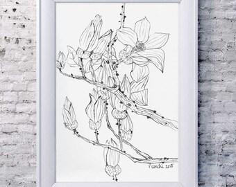 A Magnolia Branch IV