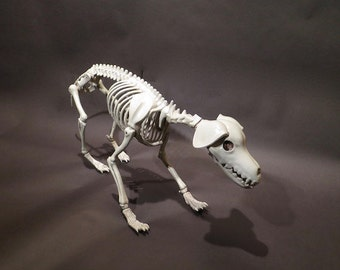 Old Comic Articulated Plastic Dog Skeleton From Dave Archers Artist Museum