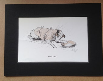 FOX TERRIER Signed mounted 1930 Cecil Aldin paralysed terrier dog plate/print Unique Vet surgery Christmas Thanksgiving Birthday dog gift