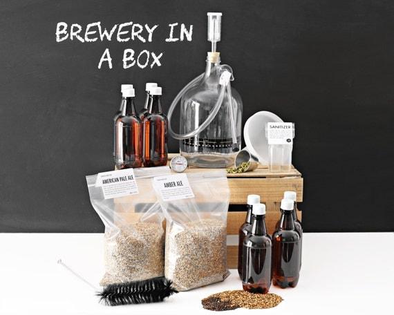 Brewery in a Box - 1 Gallon Beer Making Kit & 2 Grain Recipe Kits - Brew Bag