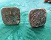 Vintage Screw Back Earrings.  Abalone, Square, Unusual and Nice