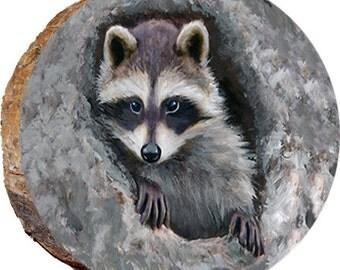 Raccoon Hiding - DAS025