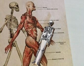Skeleton Brooch
