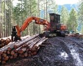 Shovel,  DIGITAL DOWNLOAD,  logging equipment decor, heavy equipment decor, man cave, boys room, forest logging tool, fine art photography