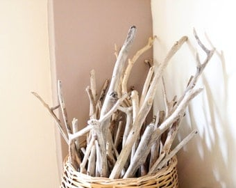 "5 Long Driftwood Branches -- Bulk Driftwood Supply From 20"" to 31"" -- Natural Beach Wood Finds -- Drift Wood for DIY Projects and Crafts"