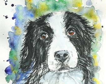 """Original mixed media painting,Border collie,dog ,""""Fly"""""""