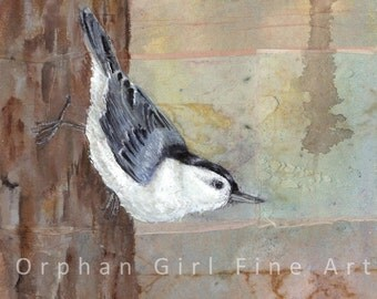 White Breasted Nuthatch. Orphan Girl Fine Art Bird Print Bird Painting Wildlife Painting Animal Art Print Bird Illustration Bird Home Decor