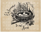 Welcome Nest Bird Eggs print Instant digital download graphic for iron on fabric transfer burlap decoupage paper pillow card tote No gt233