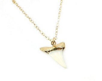 Real Shark Tooth Pendant 14k Gold Filled Long Necklace / Gift for Her - Shark Tooth Necklace - Beach Necklace - Shark Week - Gift for Her