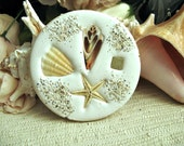 Coasters. Nautical beach coasters. 4  absorbent real shell and clay coasters for your beach home decor. Made in Florida.