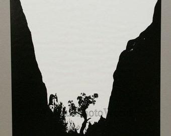 Tree in mountains vintage silhouette photogram photo