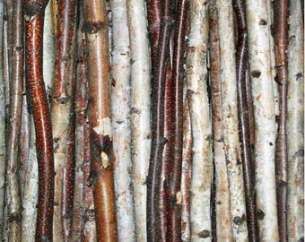 Birch Stick Pack (3 pack)