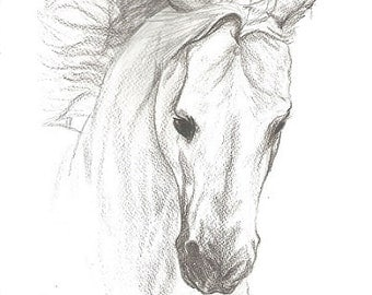 "Horse, Horse Drawing, Horse Print, Horse Pencil Drawing, Drawing, Pencil Drawing Print, Horse Decor, Western Decor, Country Decor  9"" x 12"""