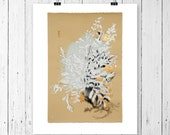 Botanical Drawing Dusty Miller Ink Pastel Fine Art Print Neutrals Black Gold White Styled Floral