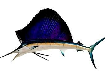 Sailfish Fish Mount - 58 Inches - Half Mount