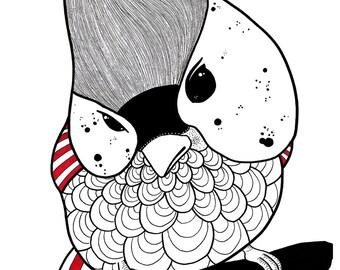 illustration oiseau A3